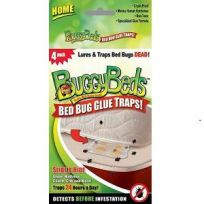 Bed Bug Glue Traps